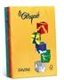 Immagine di Carta Le Cirque A4 80 Gr 500 fogli mix 5 colori forti