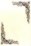 Immagine di Carta pergamena per diplomi 160 Gr conf. 10 fogli