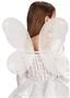 Immagine di Ali farfalla bianche 45x50 cm